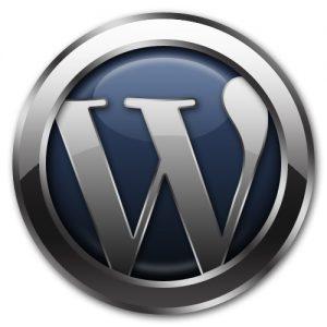 Wordpres İçerik Girme
